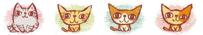 横浜の猫専門ペットシッター
